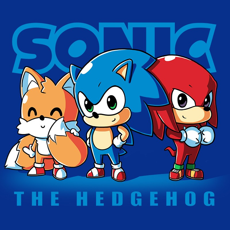 Sonic The Hedgehog Shirt Shirt From Tee Turtle Daily Shirts