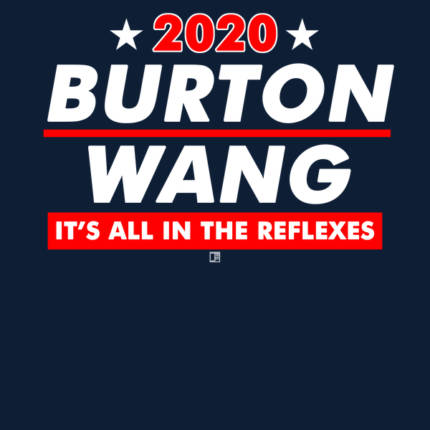 Burton and Wang 2020 Presidential Election